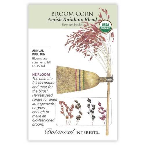 Amish Rainbow Blend Broom Corn Seeds Organic Heirloom