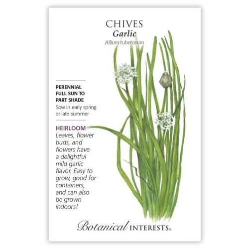 Garlic Chives Seeds Heirloom