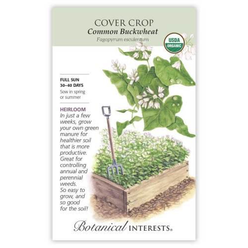 Common Buckwheat Cover Crop Seeds Organic Heirloom