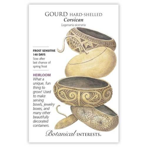 Corsican Gourd Hard-Shelled Seeds Heirloom