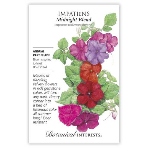 Midnight Blend Impatiens Seeds