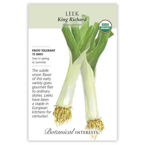 King Richard Leek Seeds Organic