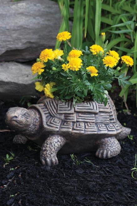 Patio Turtle Planter