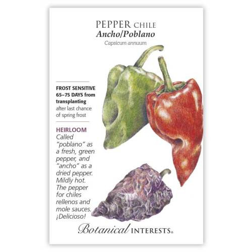Ancho/Poblano Chile Pepper Seeds Heirloom