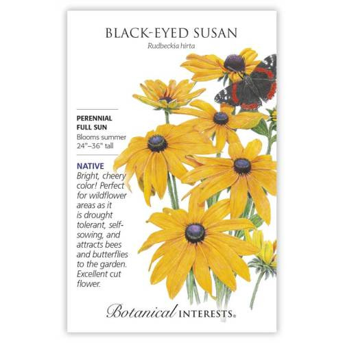 Black-Eyed Susan Seeds Native