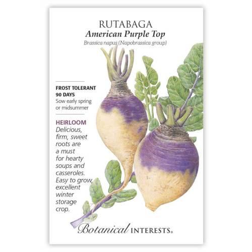 American Purple Top Rutabaga Seeds Heirloom