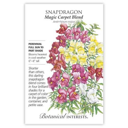 Magic Carpet Blend Snapdragon Seeds