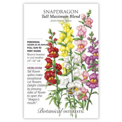 Tall Maximum Blend Snapdragon Seeds Heirloom