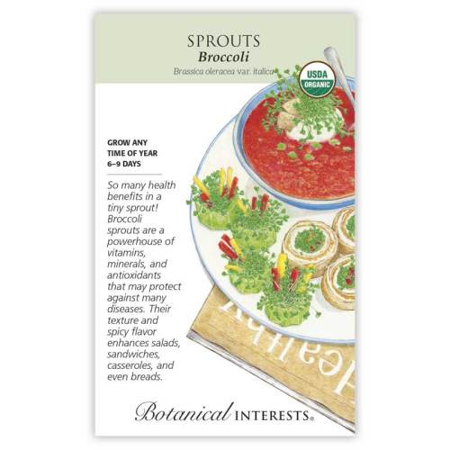 Broccoli Sprouts Seeds Organic
