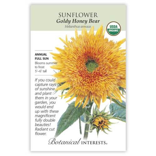 Goldy Honey Bear Sunflower Seeds Organic