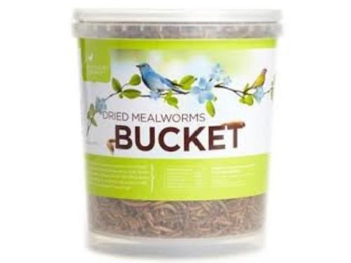 Mealworm Bucket - 14 oz