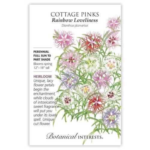 Rainbow Loveliness Cottage Pinks Seeds Heirloom