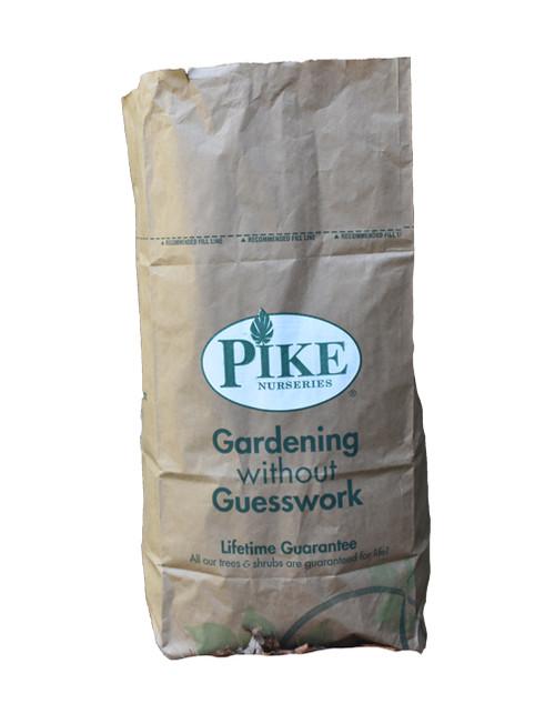 Pike Leaf Bags - 5 Pack