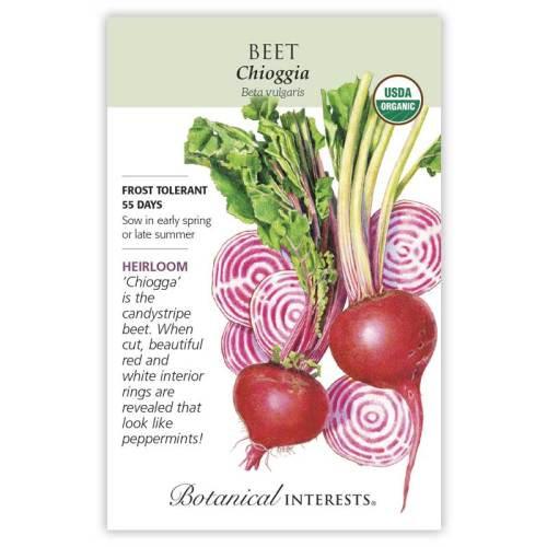 Chioggia Beet Seeds Organic Heirloom