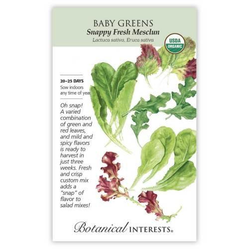 Snappy Fresh Mesclun Baby Greens Seeds Organic