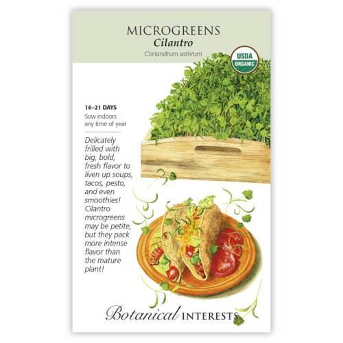 Cilantro Microgreens Seeds Organic