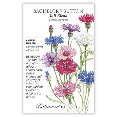 Tall Blend Bachelor's Button Seeds Heirloom