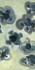 Flora Linen Scarf Buttercup