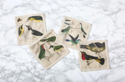 Ornithology Cocktail Napkins Set of Four