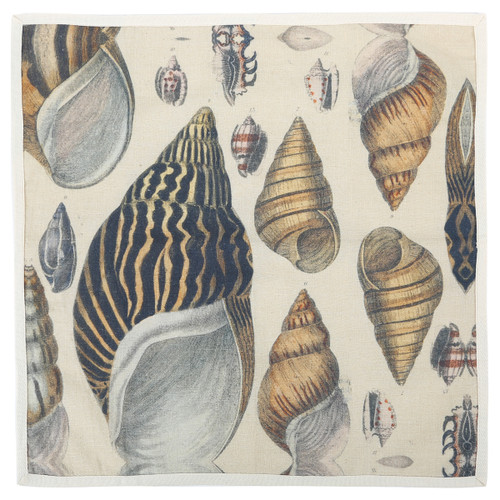 Conch Shell Shower Curtain