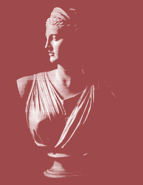 """Diana CoralPrint 16""""x20"""""""