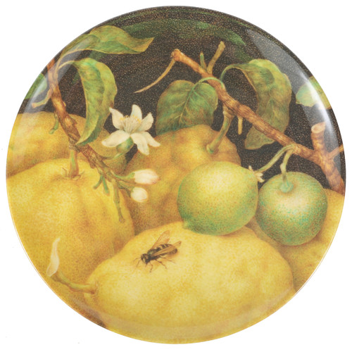 Amsterdam Fruit Side Plates Set of 4