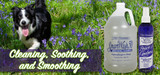 Cleaning, Soothing, and Smoothing: Spring Grooming Tips