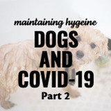 ​Guide to Maintaining Your Dog's Hygiene & Health During the Coronavirus Pandemic Part 2