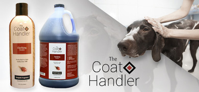 Why Professionals Choose Coat Handler