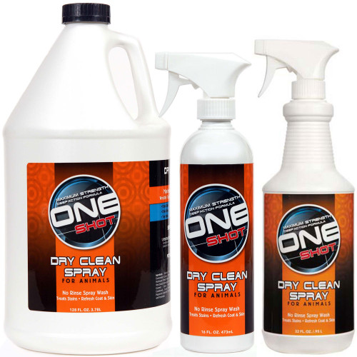 Best Shot One Shot Dry Clean Spray