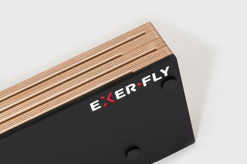 Flywheel Holder (2 Flywheels)