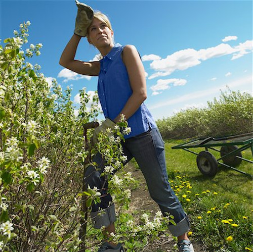 How to Stop Thigh Chafing while Gardening