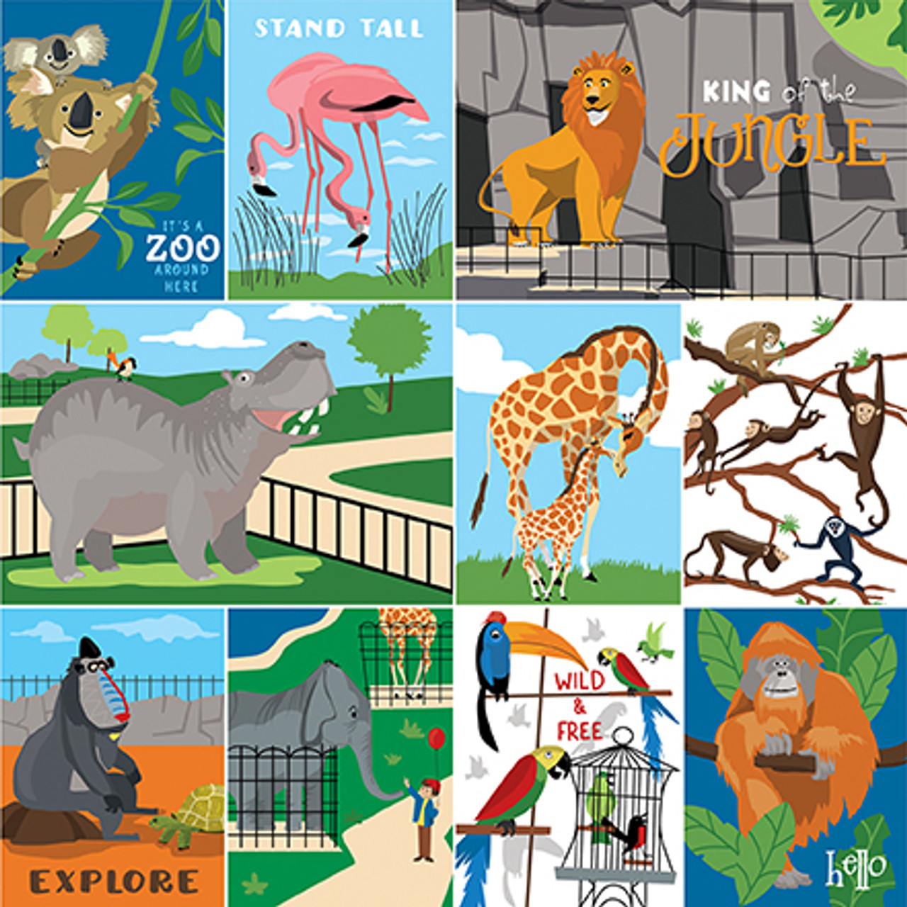 Zoo Adventure Collection Multi Journaling Cards 12 x 12 Double-Sided Scrapbook Paper by Carta Bella