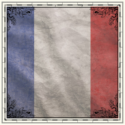 Sightseeing Collection Paris France Flag 12 x 12 Scrapbook Paper by Scrapbook Customs