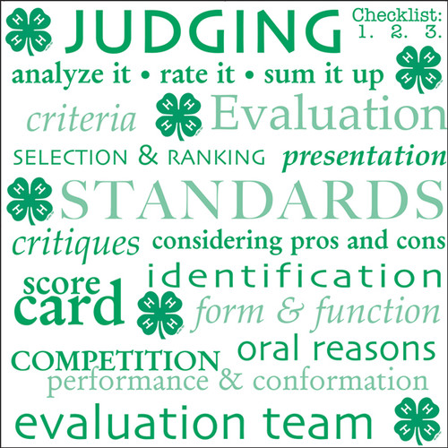 4-H Collection Judging 12 x 12 Scrapbook Paper by It Takes Two