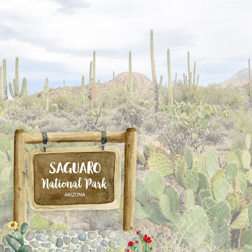National Park Collection Saguaro National Park 12 x 12 Double-Sided Scrapbook Paper by Scrapbook Customs