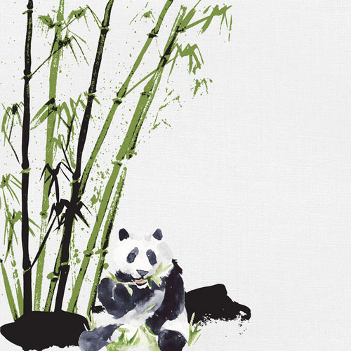 African Safari Collection Panda Bear 12 x 12 Double-Sided Scrapbook Paper by Scrapbook Customs