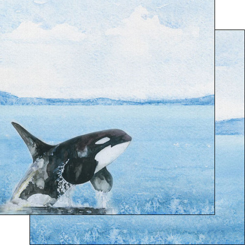 African Safari Collection Orca 12 x 12 Double-Sided Scrapbook Paper by Scrapbook Customs