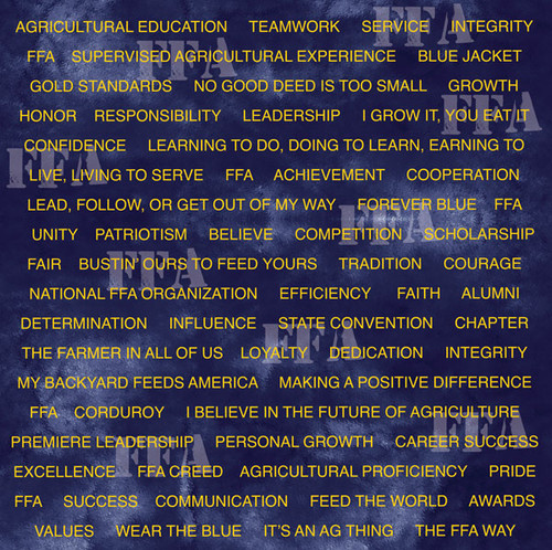 FFA - Future Farmers of America Collection FFA Agricultural Words 12 x 12 Double-Sided Scrapbook Paper by It Takes Two