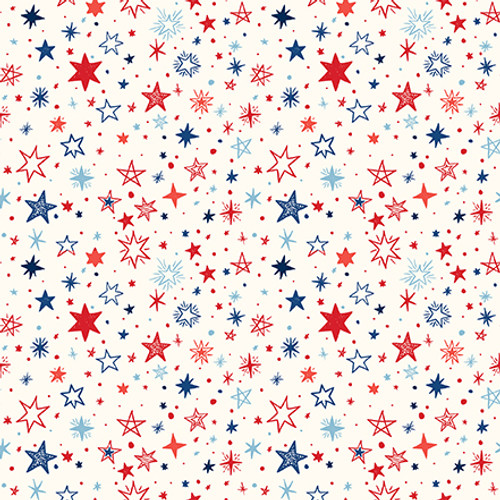 America Collection 4 x 6 Journaling Cards 12 x 12 Double-Sided Scrapbook Paper by Echo Park Paper