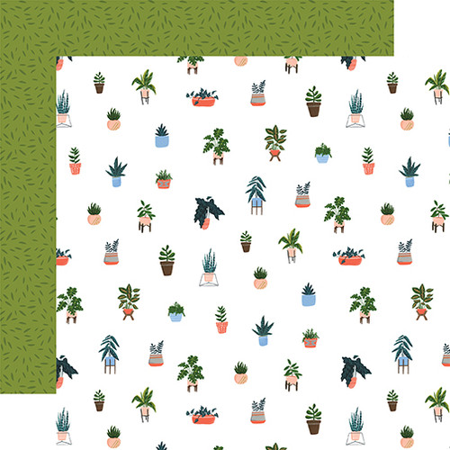 Plant Lady Collection House Plants 12 x 12 Double-Sided Scrapbook Paper by Echo Park Paper