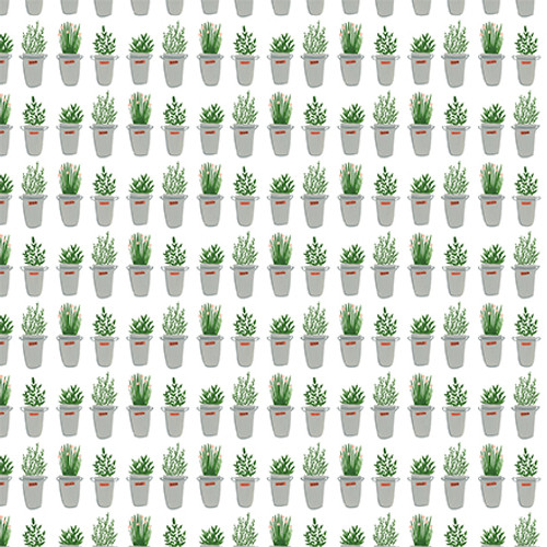 Plant Lady Collection 4 x 6 Journaling Cards 12 x 12 Double-Sided Scrapbook Paper by Echo Park Paper