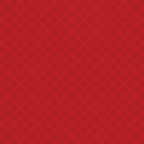Monterey Bay Collection Anchors 12 x 12 Double-Sided Scrapbook Paper by Photo Play Paper