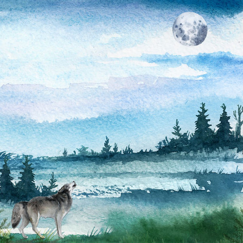 Watercolor Collection Wolf 12 x 12 Double-Sided Scrapbook Paper by Scrapbook Customs