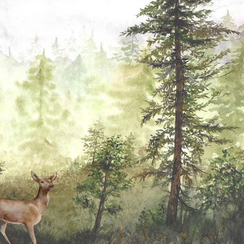 Watercolor Collection Deer 12 x 12 Double-Sided Scrapbook Paper by Scrapbook Customs