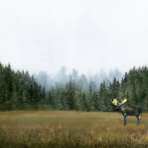 Watercolor Collection Moose 12 x 12 Double-Sided Scrapbook Paper by Scrapbook Customs
