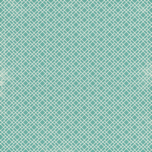 Covid-19 Collection Graph 12 x 12 Double Sided Scrapbook Paper by Scrapbook Customs