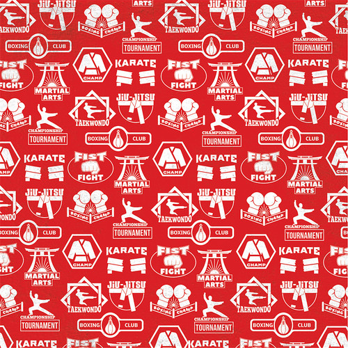 Martial Arts Collection Training 12 x 12 Double-Sided Scrapbook Paper by Photo Play Paper
