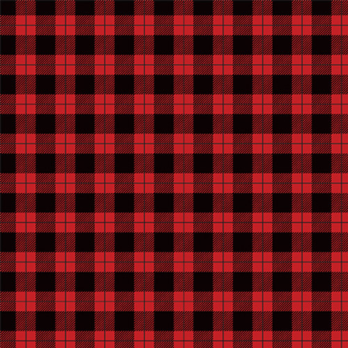 Let's Lumberjack Collection 3 x 4 Journaling Cards 12 x 12 Double-Sided Scrapbook Paper by Echo Park Paper