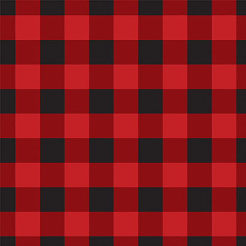 Let's Lumberjack Collection Adventure Awaits 12 x 12 Double-Sided Scrapbook Paper by Echo Park Paper